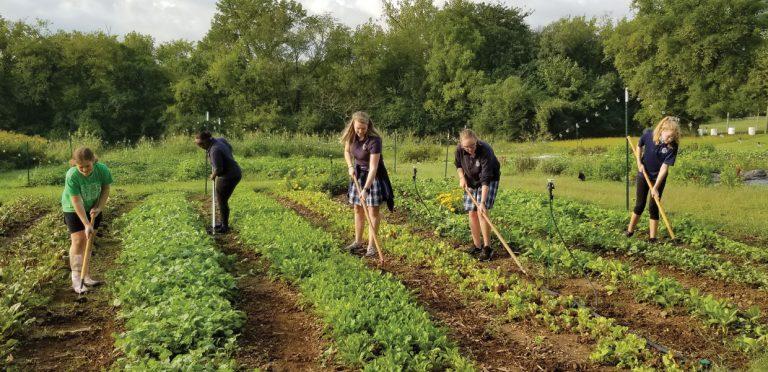 The Madison Farm